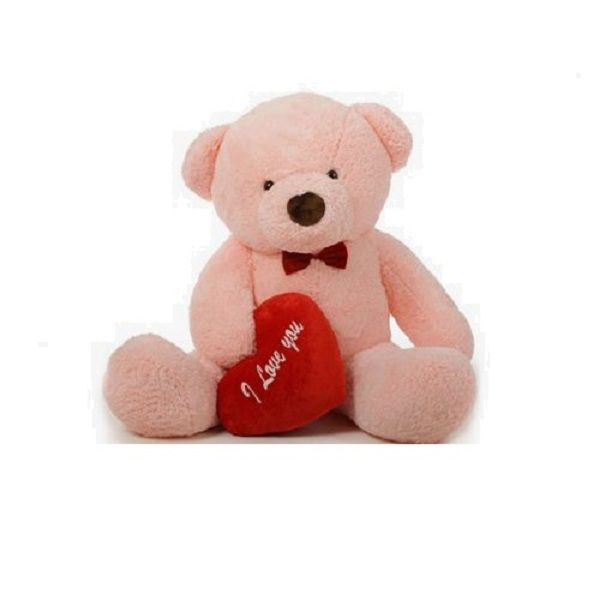 Teddy Bear-4