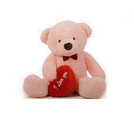 Teddy Bear-4